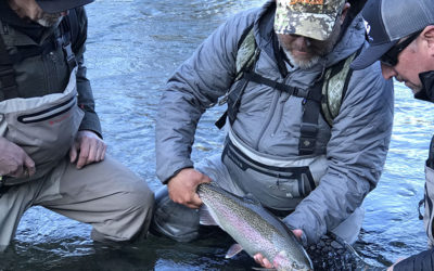 Fly Fishing in Colorado's Boxwood Gulch